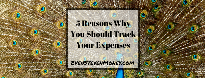 5 Reasons Why Track your Expenses Featured Image Peacock bright feathers