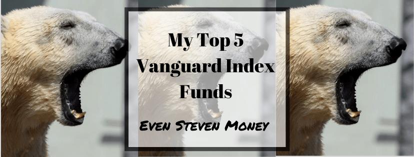 Top 5 Vanguard Index Funds Polar Bear Boring